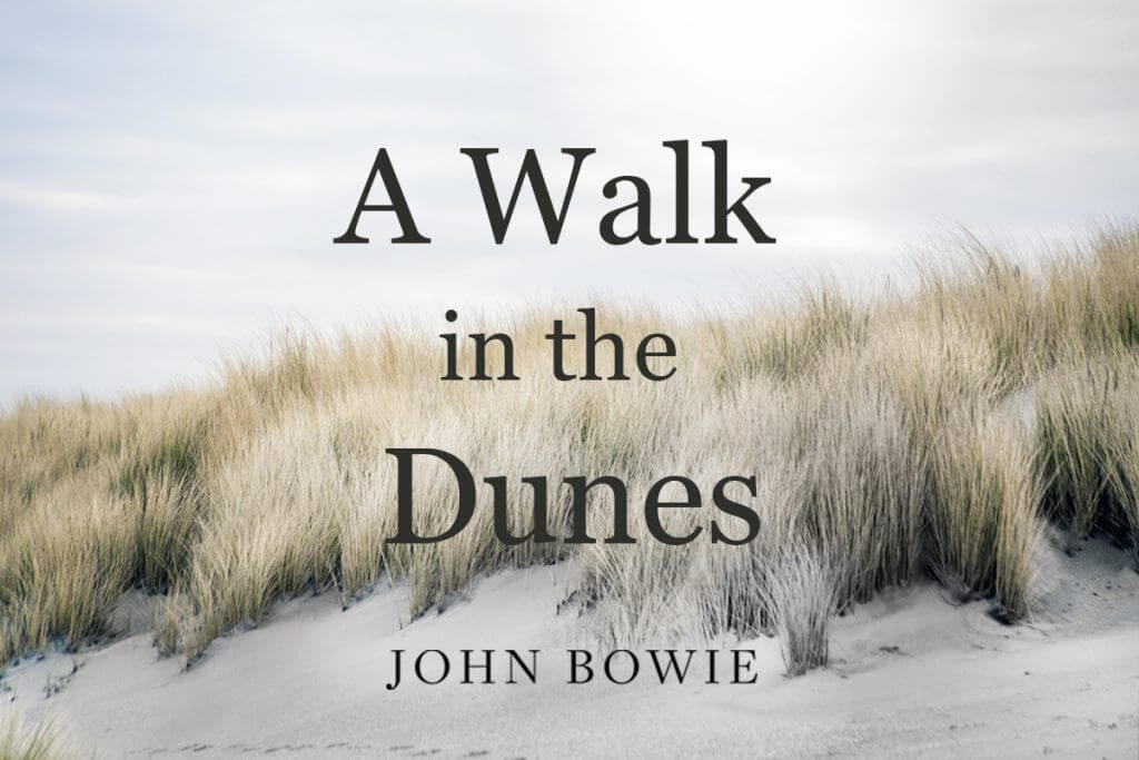 A Walk in the Dunes by John Bowie