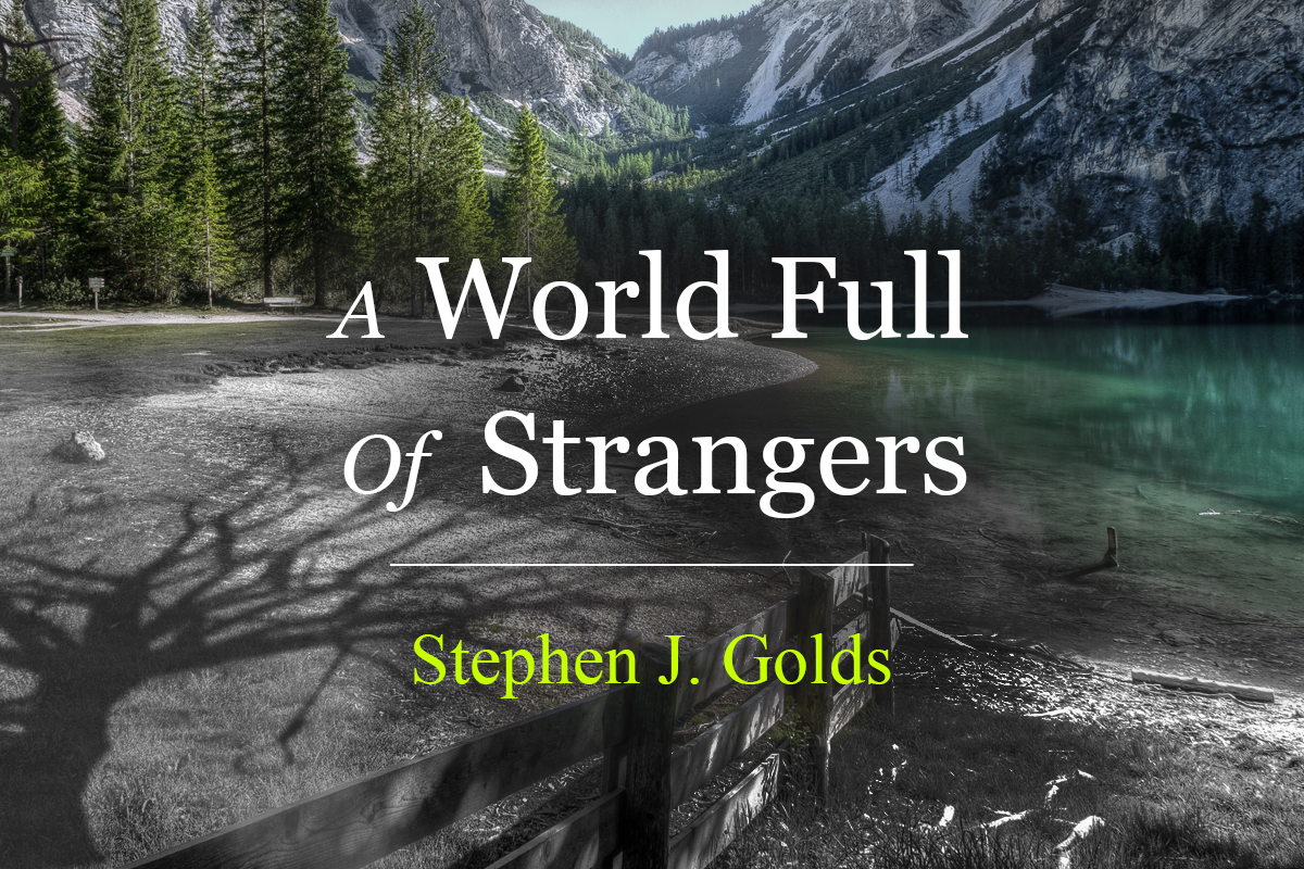A World Full Of Strangers short story by Stephen J Golds