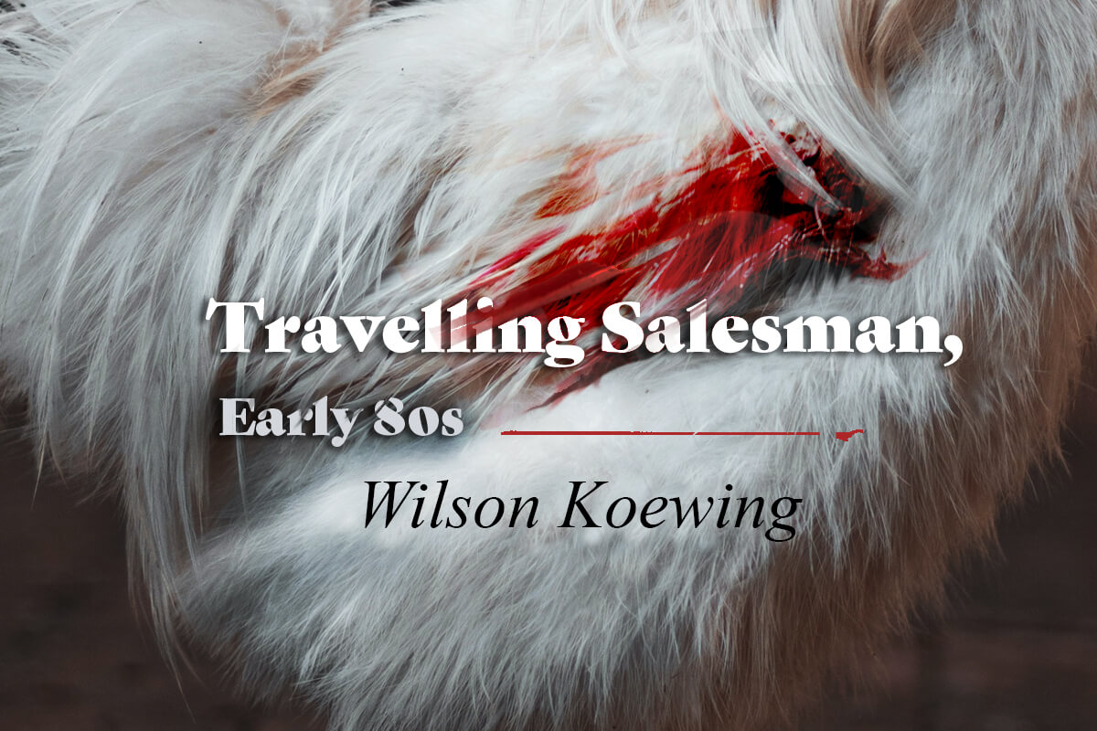 FLASH STORY - Wilson Koewing - Travelling Salesman