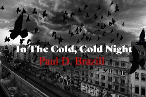 Short Story by Paul D Brazill - In The Cold Cold Night.